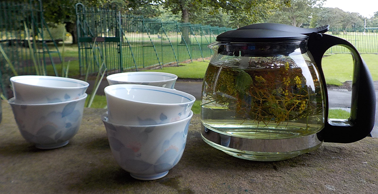 photo of Fennel and Borage tea at Growing Sudley