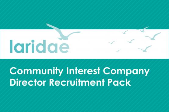 Image of front page of Laridae CIC Director Recruitment pack